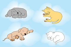 Cute background with sleepy cats and dogs Royalty Free Stock Images