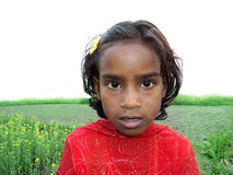 Cute Bangladeshi Girl. With mustard field & Sky Royalty Free Stock Photos