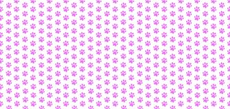 Cute banner with seamless pattern of rose animal paw prints. On white background. Vector illustration, poster, template, wallpaper Stock Photo