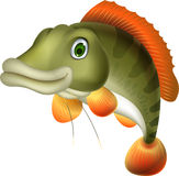 Cute bass fish cartoon Stock Photography