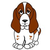 Cute Basset Hound Puppy Cartoon. Dog clip art of a brown and white Basset Hound puppy cartoon on a white isolated background vector illustration