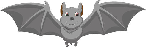 Cute bat cartoon. Illustration of cute bat cartoon isolated on white Royalty Free Stock Photo