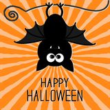 Cute bat. Sunburst background. Happy Halloween card. Flat design. Royalty Free Stock Photography