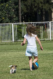 Cute Beagle puppy and little girl. Cute Beagle puppy on the green grass Royalty Free Stock Photo