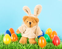 Cute bear as easter bunny with colorful eggs Stock Photos