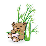 Cute Bear in Bamboo Forrest 02 Stock Photography