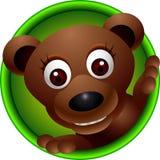 Cute bear cartoon Stock Photography