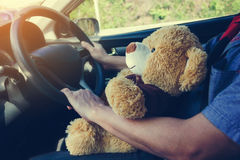 Cute bear doll companion on lap while driving car, man together. Lovely bear doll gift inside car Stock Image