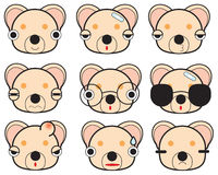 Cute bear faces Stock Image
