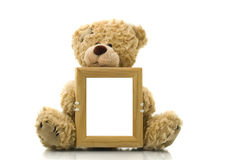 Cute bear holding empty frame for picture or photo. Over white stock photography