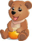 Cute Bear with Honey Royalty Free Stock Photos