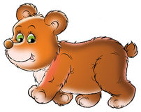Cute bear illustration Royalty Free Stock Photos