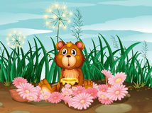 A cute bear with pink flowers Royalty Free Stock Photo