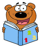 Cute bear reading a book Stock Photo