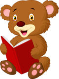 Cute bear reading Stock Photo