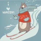 Cute bear on ski. Cute cartoon bear on winter ski. vector illustration Royalty Free Stock Photography