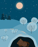 A cute bear sleeping. In the winter in his den Royalty Free Stock Images