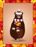 Cute bear in white knitted scarf and hat holding maple leaves in autumn border Royalty Free Illustration