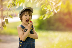 Cute beautiful child, boy, eating strawberries and in the park Stock Image
