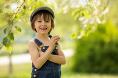 Cute beautiful child, boy, eating strawberries and in the park royalty free stock photography