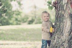 Cute beautiful child having fun in warm autumn day in park Stock Photos