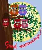 Cute beautiful flirtatious red owl on a branch with a cup of steaming coffee, tea or chocolate. Cute beautiful flirtatious owls on a branch with a cup of royalty free illustration