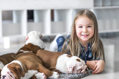 Cute beautiful girl lying on the floor with the puppies English bulldog Stock Image