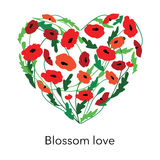 Cute beautiful heart with blossom poppy background.Vector illustration Stock Photo