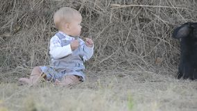Cute beautiful laughing baby girl on grass with white stock video