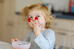 Cute beautiful little toddler girl eating fresh raspberries. Adorable baby child tasting raspberry. Healthy food. Childhood and development. Happy kid at home stock images