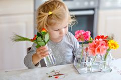 Cute beautiful little toddler girl making flower bouquet. Adorable baby child playing with different flowers. Healthy royalty free stock image