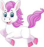 Cute beautiful pony horse running isolated on white background Stock Photo