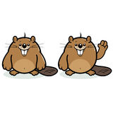 Cute beaver character Stock Images
