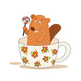 Cute beaver in a cup holding a lollipop. Stock Photos