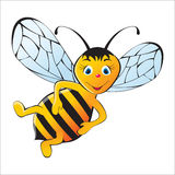Cute bee Royalty Free Stock Photo