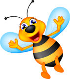 Cute bee caroon Royalty Free Stock Photo