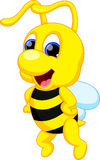 Cute bee cartoon Royalty Free Stock Images