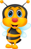 Cute bee cartoon Stock Photos