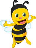 Cute bee cartoon Stock Images