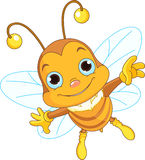 Cute Bee flying Stock Images