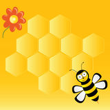 Cute bee with honeycombs vector Stock Photo