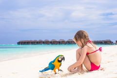 Cute big colorful parrot with adorable little girl Stock Image