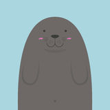 Cute big fat monk seal Stock Image
