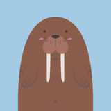Cute big fat walrus Royalty Free Stock Photography