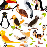 Cute bird design seamless texture. Cartoon-style.  Stock Photos