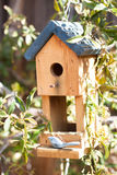 Cute bird house in garden Royalty Free Stock Photos