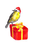 Cute bird - red santa hat. Christmas present box. Watercolor Royalty Free Stock Images