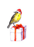 Cute bird - red santa hat. Christmas present box. Watercolor Stock Photo
