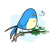 Cute Bird Singing Royalty Free Stock Image