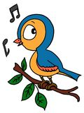 Cute bird singing a song and white background Royalty Free Stock Image